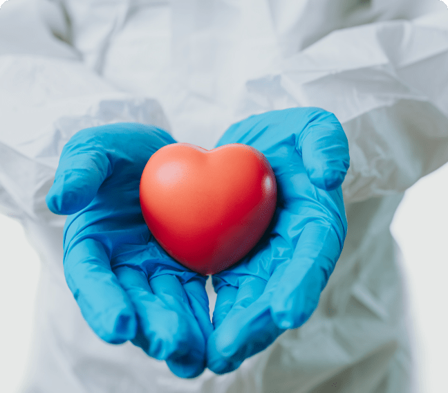doctor holding heart in hands